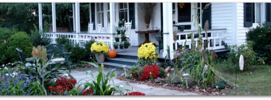 Fall Mums at the Inn on Poplar Hill,  Orange, VA Bed and Breakfast