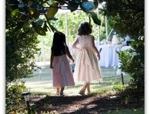 Weekend Wedding Celebration