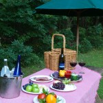picnic at Orange Virginia bed and breakfast