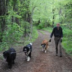 Walking trails at pet friendly b&B
