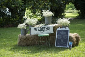 Virginia Garden wedding