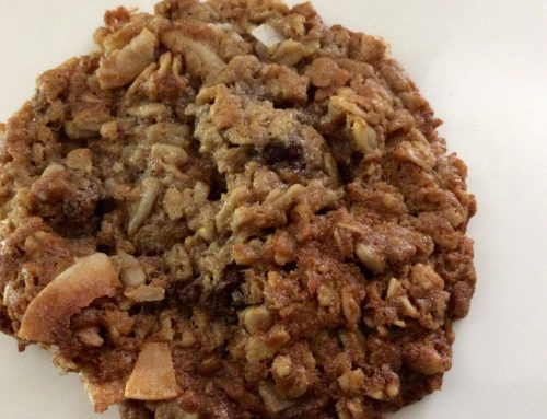 Yummy Gluten Free Oatmeal + Cookie Recipe